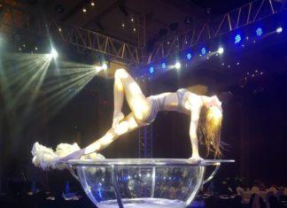 SOEA circus
